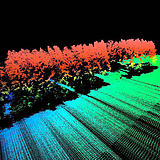 LiDAR laser scan 3D point cloud of a forest
